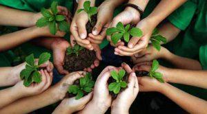 kids environment2 300x166 Dạy Trẻ Những Bài Học Về Bảo Vệ Môi Trường