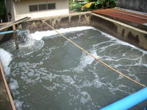 cong ty xu ly nuoc thai sinh hoat 300x225 Hệ thống xử lý nước thải