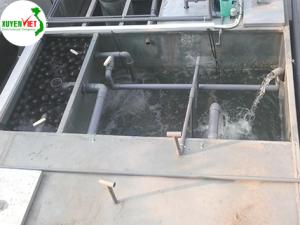 phuong phap sinh hoc xu ly nuoc thai sinh hoat 300x225 Hệ thống xử lý nước thải